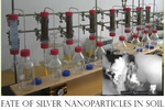 Dissertation Martin Hoppe Fate of Silver Nanoparticles in Soil