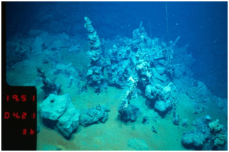 Inactive hydrothermal chimneys on the sea floor of the Lau Basin