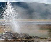 Geysir at Lake Bogoria, Kenya