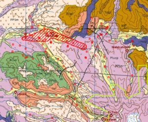 Geological map of the survey area