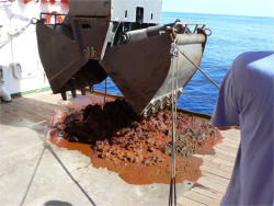 Geological samples of the seabed