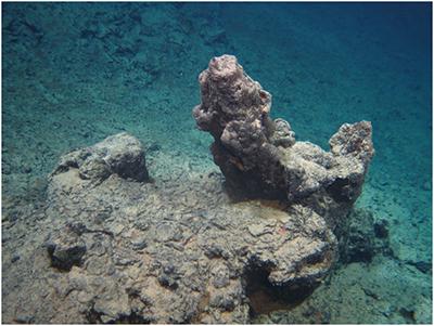 Bgr Projects Marine Polymetallic Sulphides Index