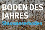 Stauwasserboden: Boden des Jahres