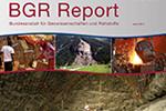 BGR Report 2015